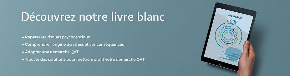 Bannière livre blanc tablette v2.jpg