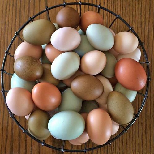 Farm Fresh NON- GMO Eggs (24 count)
