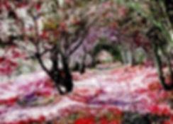 23-1-18-0721_edited_edited_edited.jpg