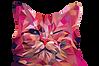 Katze_pink.png