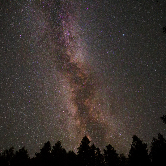 Alder Lake Milkyway