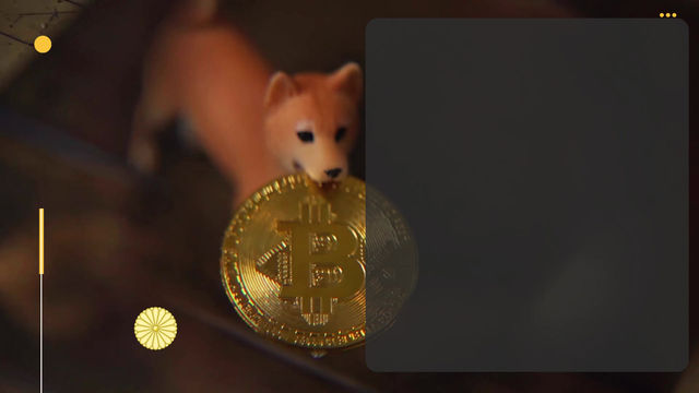 """Investment companies say in JPMorgan research that cryptocurrencies are """"rat poison"""" and fad."""