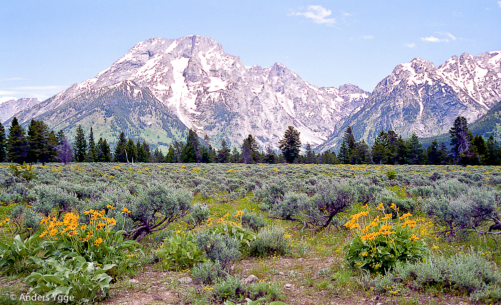 Teton, north from Jackson Hole