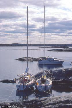 Skagen 1981