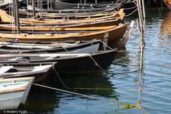Bassholmen, Fiskebäck