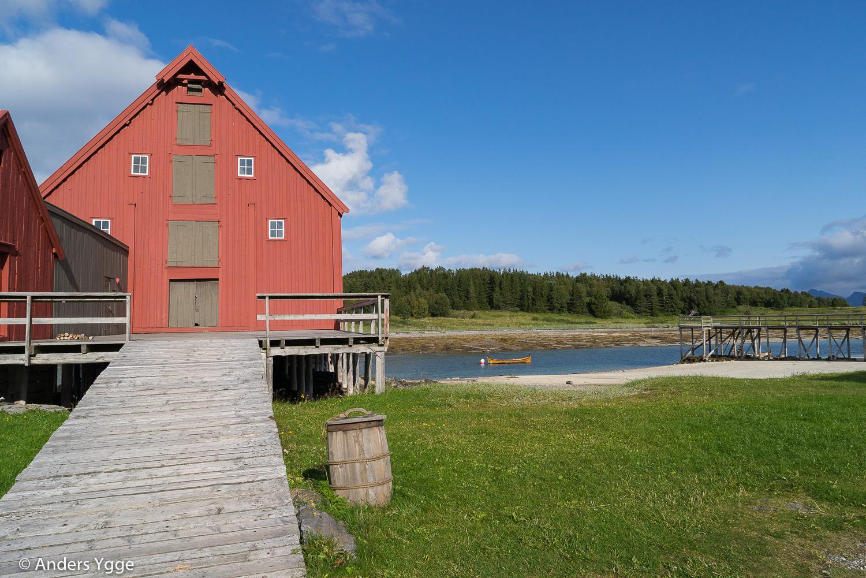 Bodö-Trondheim-24