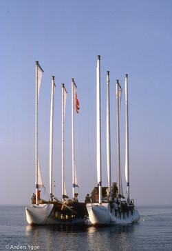 Skagen 1981-6