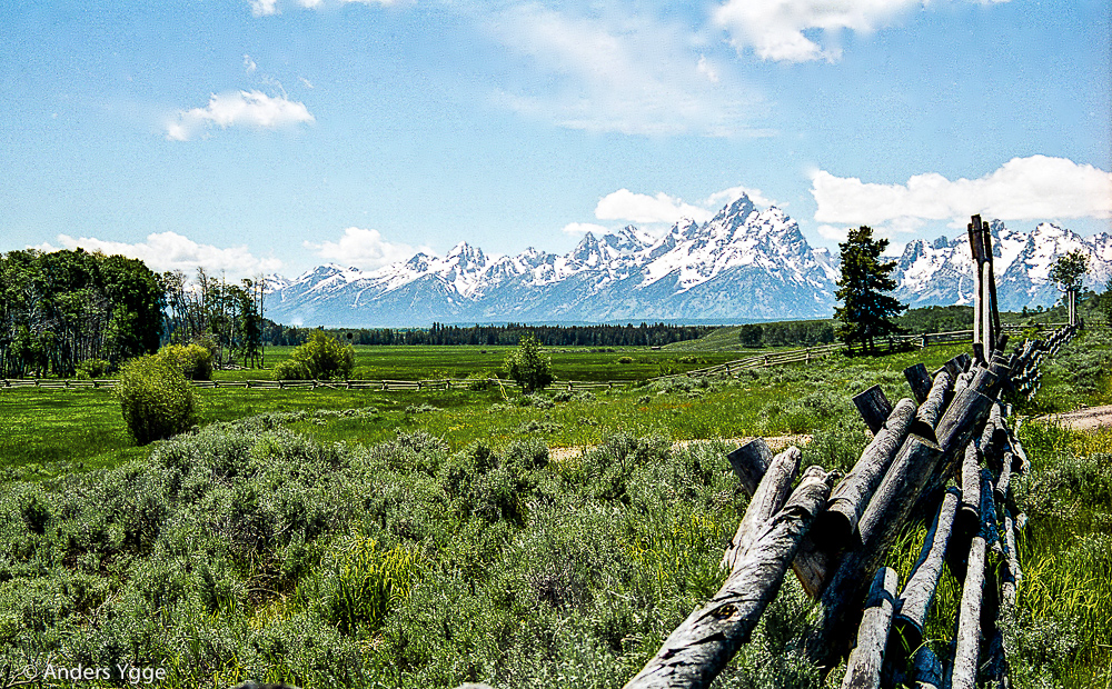 Teton, from Moran, Wyoming