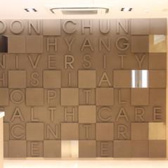 Soon Chun University Hospital