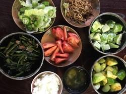 収穫野菜'18