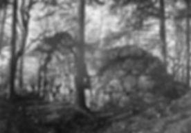 Skog,_Sankt_Olofs_kapellruin_-_KMB_-_160