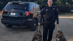 Pct. 2 Spotlight On Deputy Vincent Dodd