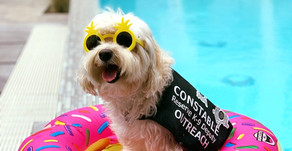 Summer Pool And Water Safety Tips From Constable Ballesteros And Brody