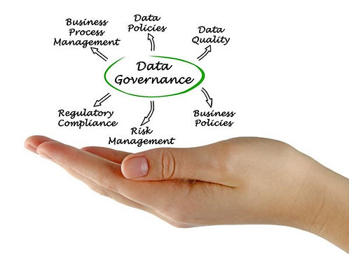 Data governance coaching