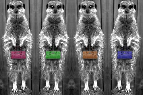 Designer Handbag Meerkats