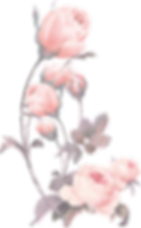 Flowers_01_edited.png