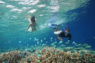 Snorkelling_in_the_lagoon_S.jpg