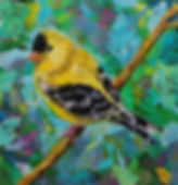 The American Goldfinch