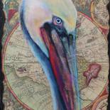 Pelican on old atlas map