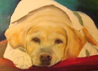 How to paint a pet portrait 2