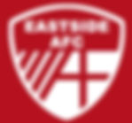 Eastside AFC Youth Football Team Logo