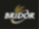 bridor logo.png