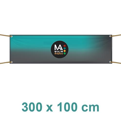 Pancarta 300x100cm