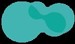 Braind_logo.png