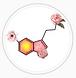 serotonin says.PNG