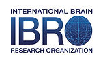 Logo_of_International_Brain_Research_Org