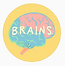the brains project.PNG