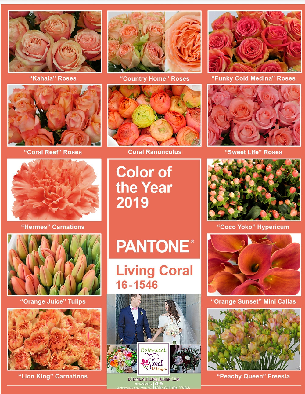 Living Coral! 2019 Pantone Color of the Year!!