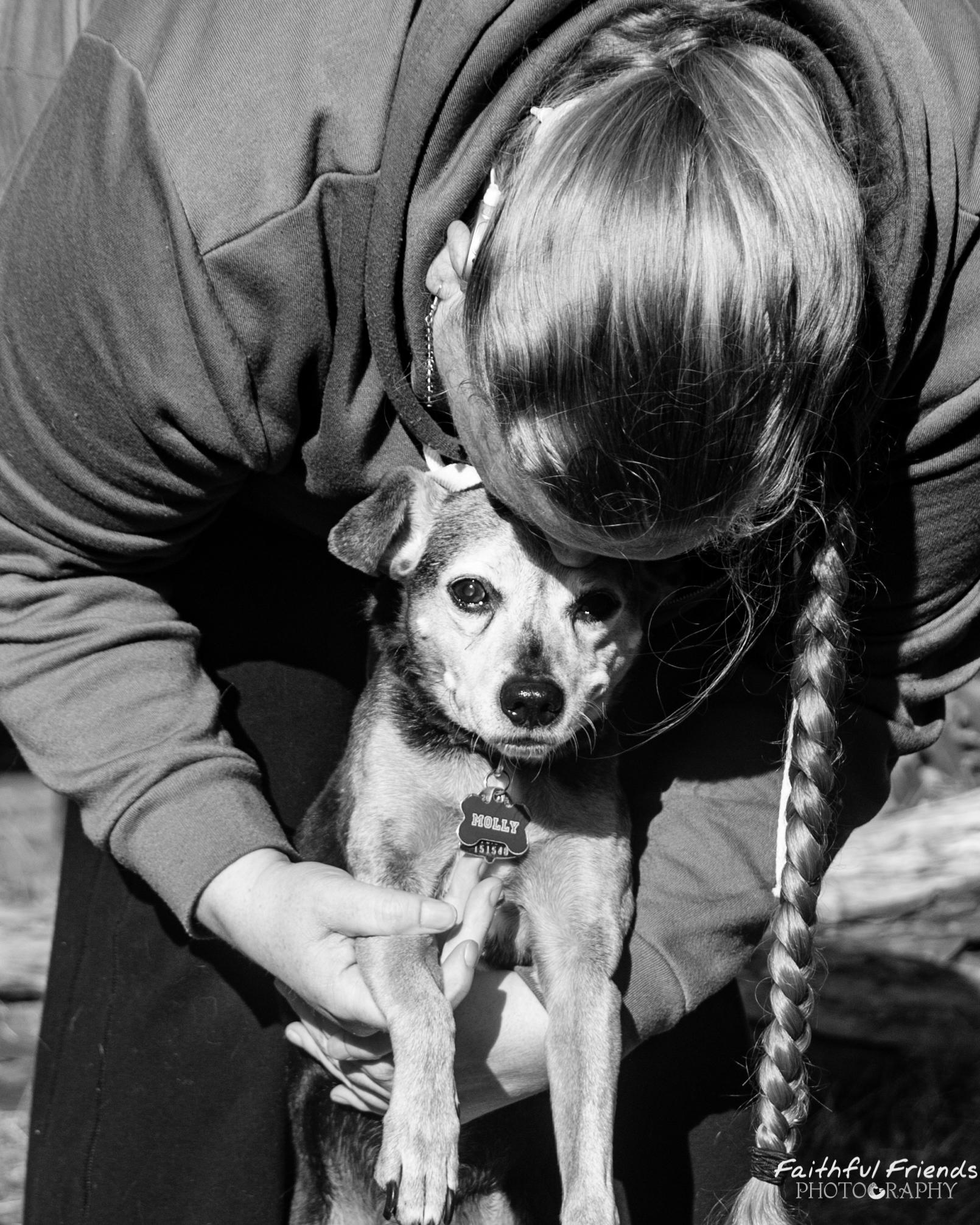 Oklahoma city pet photographer