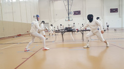 High Level Fencing