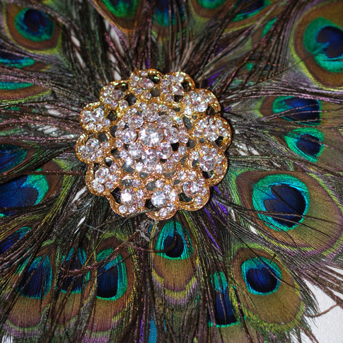Feathers & Brooches