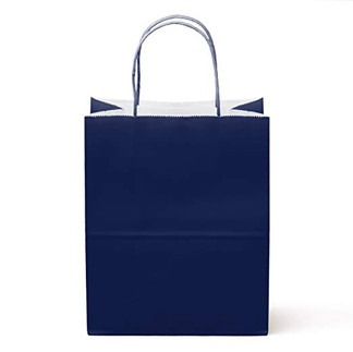 NEW- Navy Gloss Bags