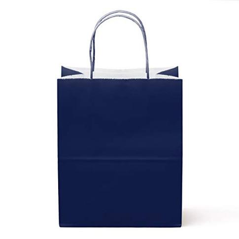 NEW- Navy Gloss Bags