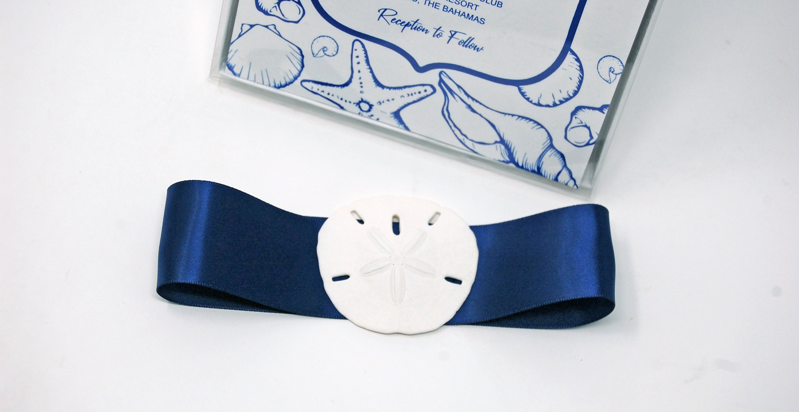 Navy Blue Ribbon with Sand Dollar Bellyband