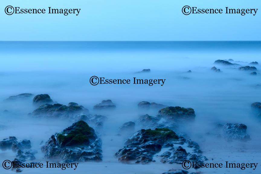 Landscape 39