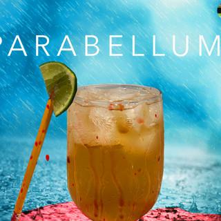 The Parabellum