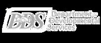 Department of Developmental Services