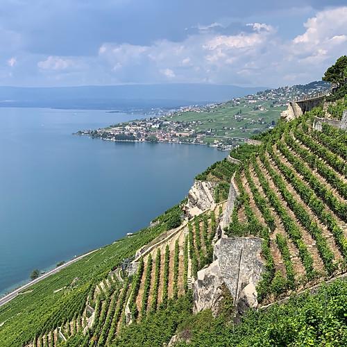Weinreise Schweiz