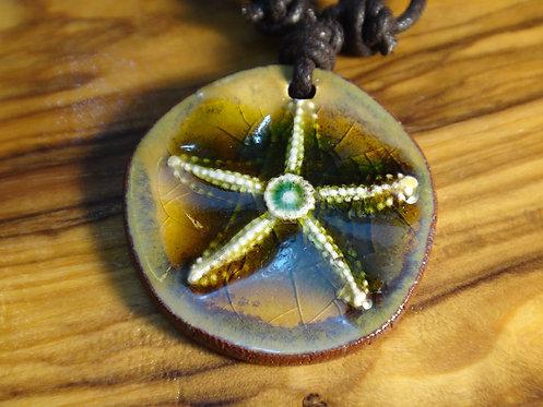 Denizyıldızı 10
