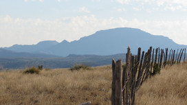 Landowner Resources