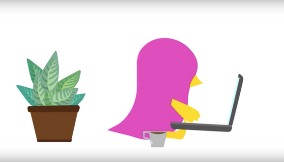 Chicks Coffee Animated Commercial