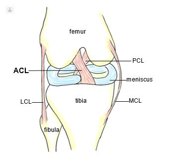 ACL PCL LCL MCL specialist knee clinic west london