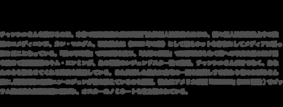 チャンシル サイト解説3.png