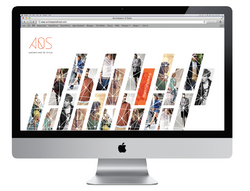 Archetypes of Style Website