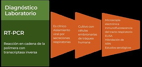 DIAGNOSTICO DE LABORATORIO.png