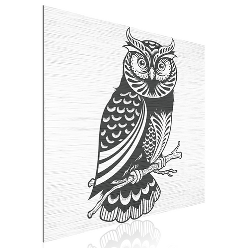 Tableau Owl